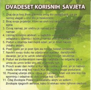 DVADESET 1
